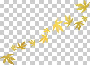 Leaf Autumn Leaves Portable Network Graphics Blog PNG