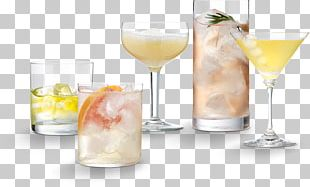 Cocktail Garnish Gin And Tonic Spritzer Non-alcoholic Drink Tonic Water PNG