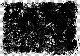 Grunge Photography Black And White Texture PNG