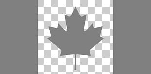 Flag Of Canada Maple Leaf Canadian Red Ensign PNG
