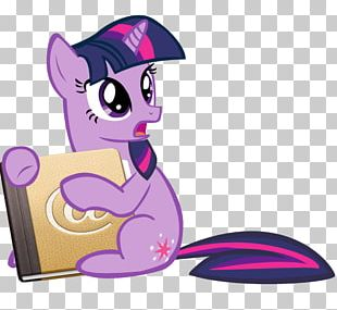 Pony Rainbow Dash Rarity Twilight Sparkle Computer Icons PNG