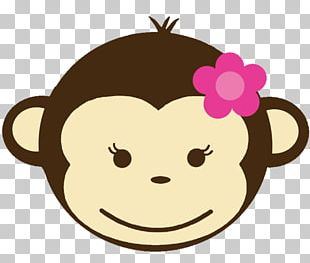 Monkey Baby Jungle Animals PNG