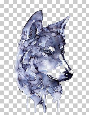 Gray Wolf Watercolor Painting Drawing Printmaking PNG