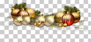 Christmas Day Christmas Ornament Christmas Card Birthday Christmas Lights PNG