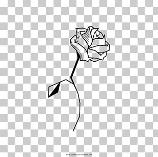 Coloring Book Drawing Black And White Line Art PNG