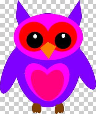 Owl Desktop PNG