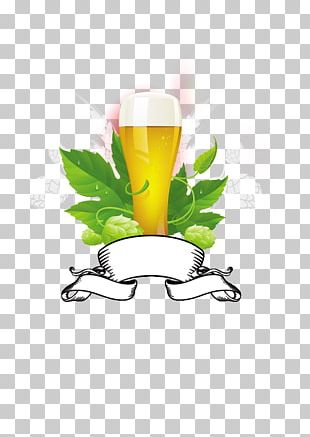 Beer India Pale Ale Hops PNG