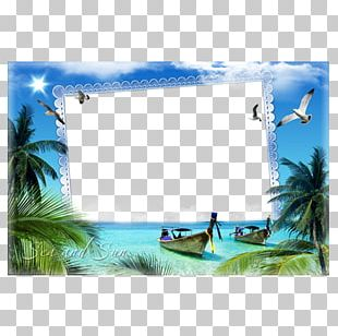 Frame Photography Window Film Frame PNG