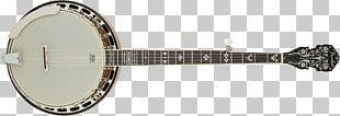 Musical Instruments Fender Precision Bass Banjo Chordophone String Instruments PNG