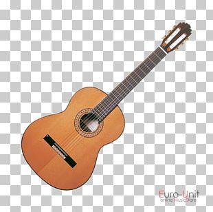 Takamine Guitars Steel-string Acoustic Guitar Acoustic-electric Guitar Classical Guitar PNG