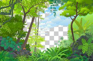 Landscape Jungle Euclidean Tropical Rainforest PNG