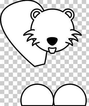 Colouring Pages Coloring Book American Beaver PNG