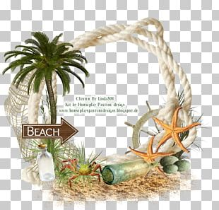 Thepix Frames Beach PNG