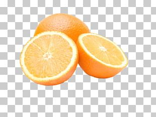 Orange Juice Valencia Orange Auglis PNG