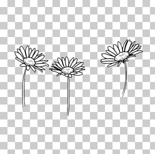 Drawing Flower Black And White Sketch PNG