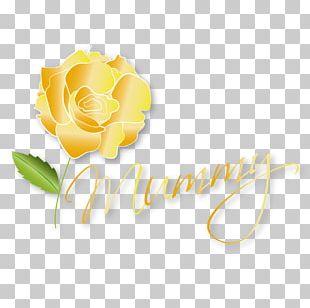 Garden Roses Logo Desktop Cut Flowers PNG