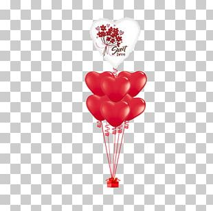 Love Balloon Valentine's Day Gift Capricorn PNG