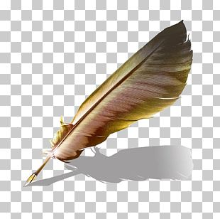 Quill Book Paper Ink PNG
