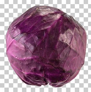Red Cabbage Purple Vegetable PNG