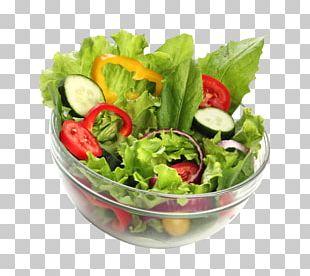 Salad Vegetable Food Bowl Healthy Diet PNG