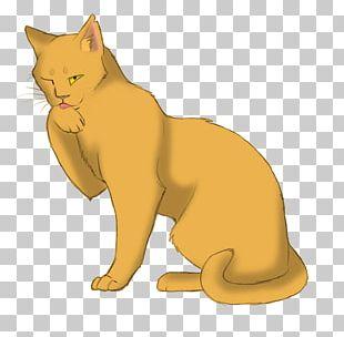 Night Whispers Warriors Goldenflower Tigerstar Cat PNG