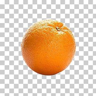 Orange Juice Blood Orange Tangerine Tangelo Clementine PNG