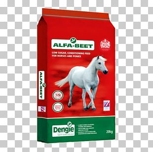 Horse Equine Nutrition Beetroot Sugar Beet PNG