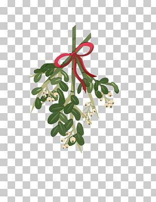 Mistletoe Candy Cane Christmas PNG