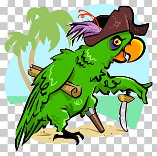 Piracy Pirate Parrot Art PNG