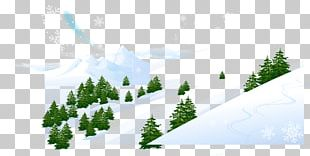 Snow Winter Photography PNG