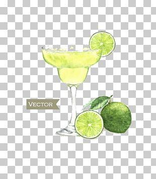 Cocktail Margarita Martini Watercolor Painting PNG