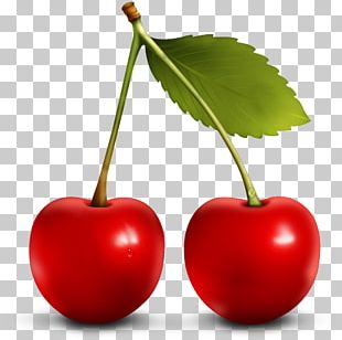 Berry Cherry ICO Fruit Icon PNG