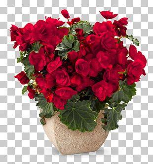 Floristry Flower Bouquet Rose Cut Flowers PNG