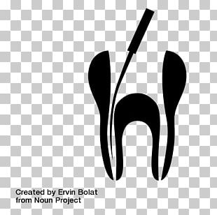 Root Canal Dentistry Endodontic Therapy Endodontics PNG
