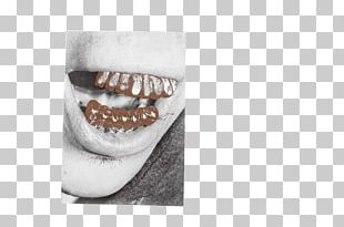 Jaw Mouth Tooth PNG