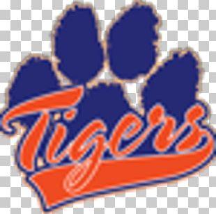 Detroit Tigers Baseball Sport PNG