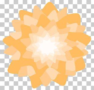 Orange Blossom Flower Petal PNG