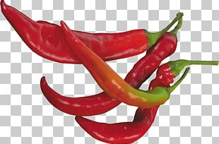 Chili Pepper Serrano Pepper Cayenne Pepper Jalapeño PNG