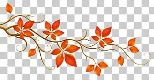 Autumn Leaf Color Branch PNG