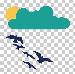 Clouds Sun Seagull Flying Birds PNG