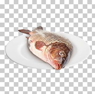 Fish Products Oily Fish PNG