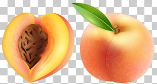 Peach Fruit PNG