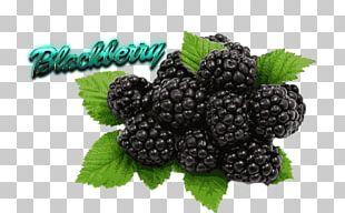 Organic Food Black Raspberry Berries Flavor Fruit PNG