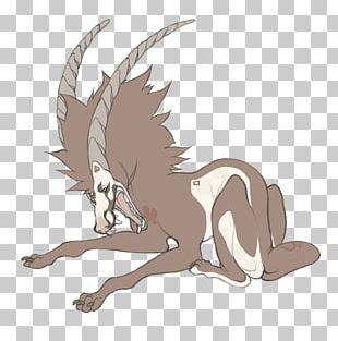 Horse Cat Mammal Dog Pet PNG