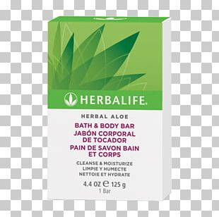 Product Leaf Herb PNG
