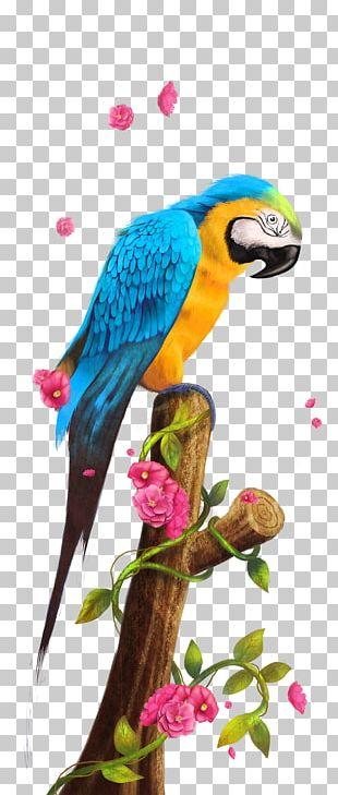 Parrot Bird Paper PNG