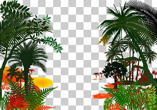 Jungle PNG
