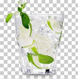 Vodka Tonic Cocktail Distilled Beverage Beer PNG