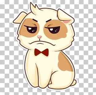 Whiskers Kitten Telegram Sticker LINE PNG