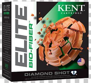 Cartridge Firearm Shotgun Shell Recoil PNG